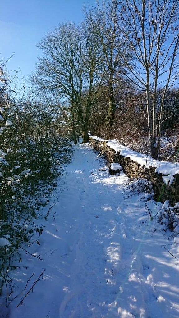 25-01-19 : Par une belle journée hivernale....